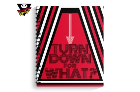 TurnDownforWhat1-1